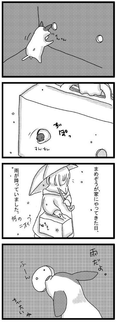 20100406_01やさしいあめ