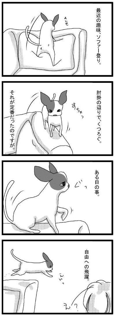 20100413_01じゃんぷ