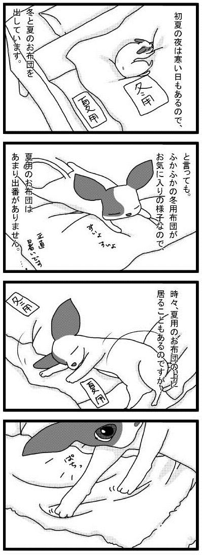 20100607_01違いが分かるぼく