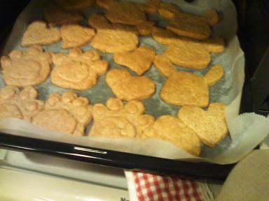 20101016_08cookie.jpg