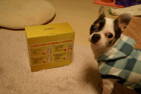 20101113_19oyatsu.jpg