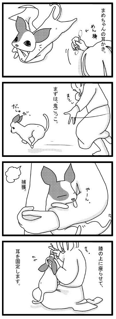 20101126_01mimikaki.jpg