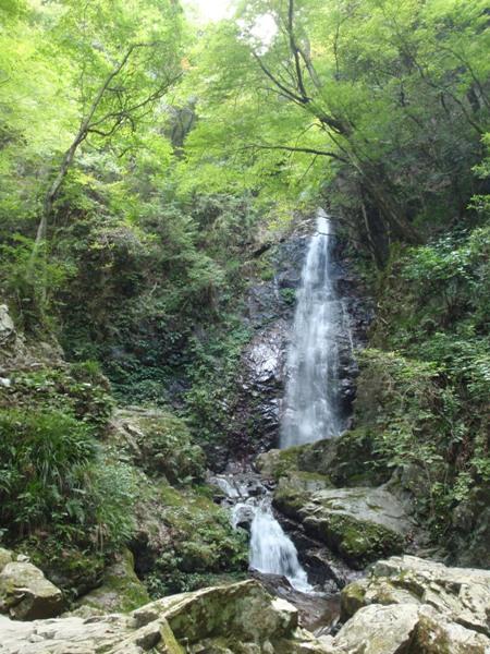 払沢の滝1