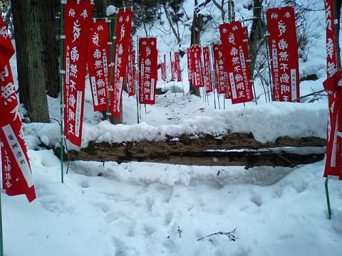 白糸神社6;参道の倒木