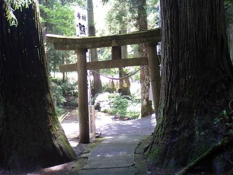 隠津島神社4