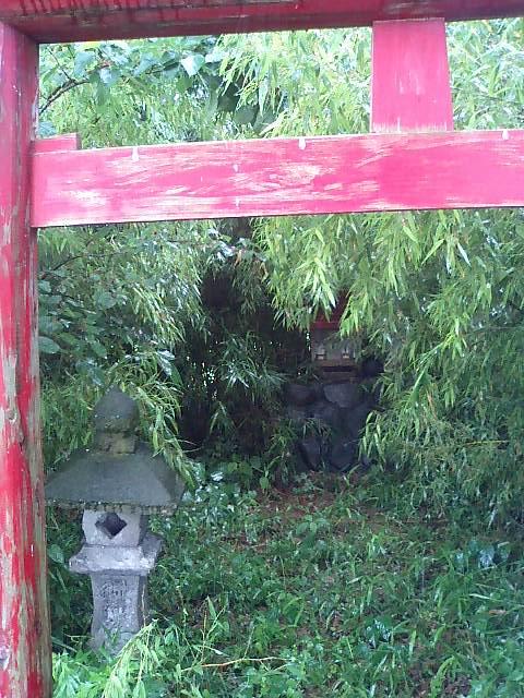 田んぼの中の稲荷神社5
