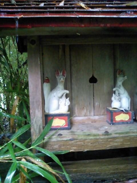 田んぼの中の稲荷神社7