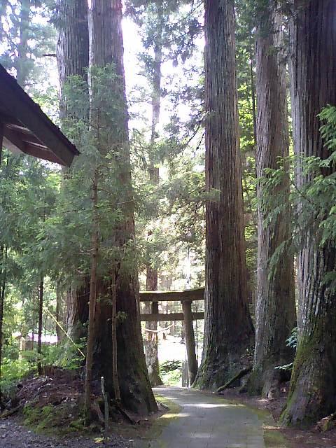 隠津島神社5