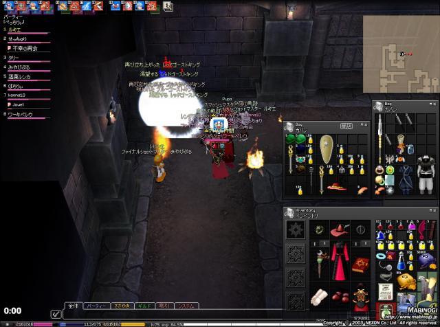 mabinogi_2010_04_28_004.jpg