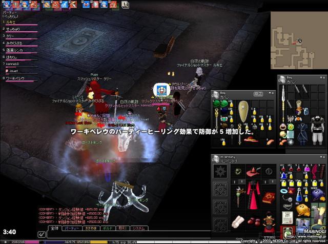 mabinogi_2010_04_28_008.jpg