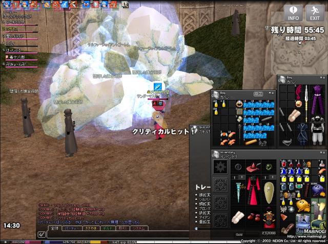 mabinogi_2010_05_05_004.jpg