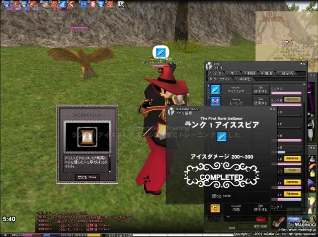 mabinogi_2010_05_05_016.jpg