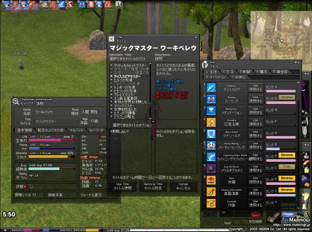 mabinogi_2010_05_05_017.jpg