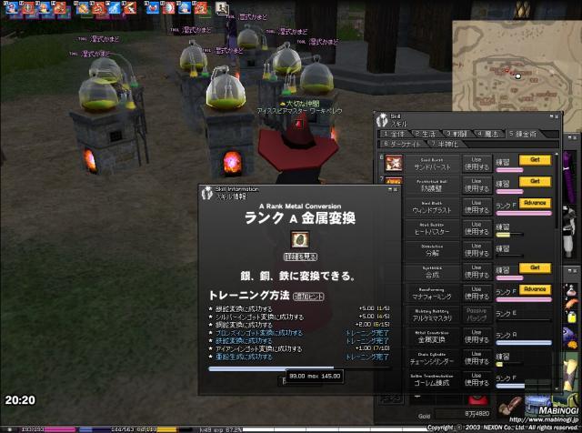 mabinogi_2010_05_05_019.jpg