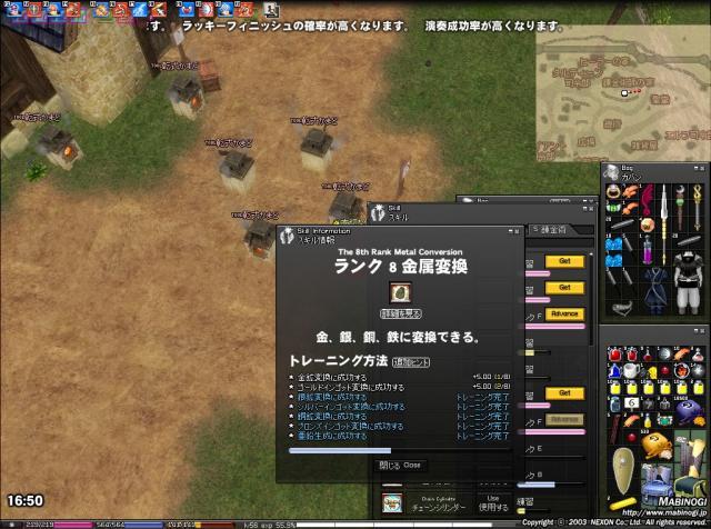 mabinogi_2010_05_08_004.jpg