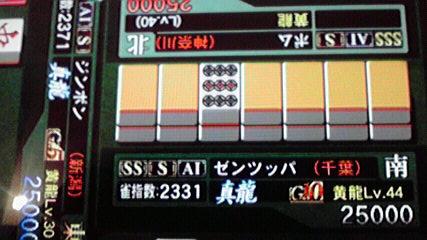 2010120412350000.jpg