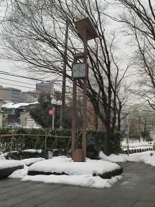 20110206_1.jpg