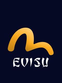 EVISU011.jpg