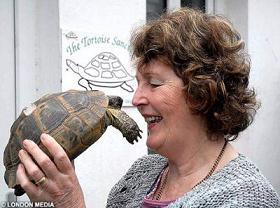 tortoiseDMLM2502_468x346.jpg