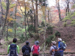 変換 ~ 2010年11月6~8日京都山旅  067