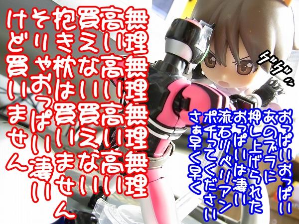 RIMG0051_20100217194520.jpg