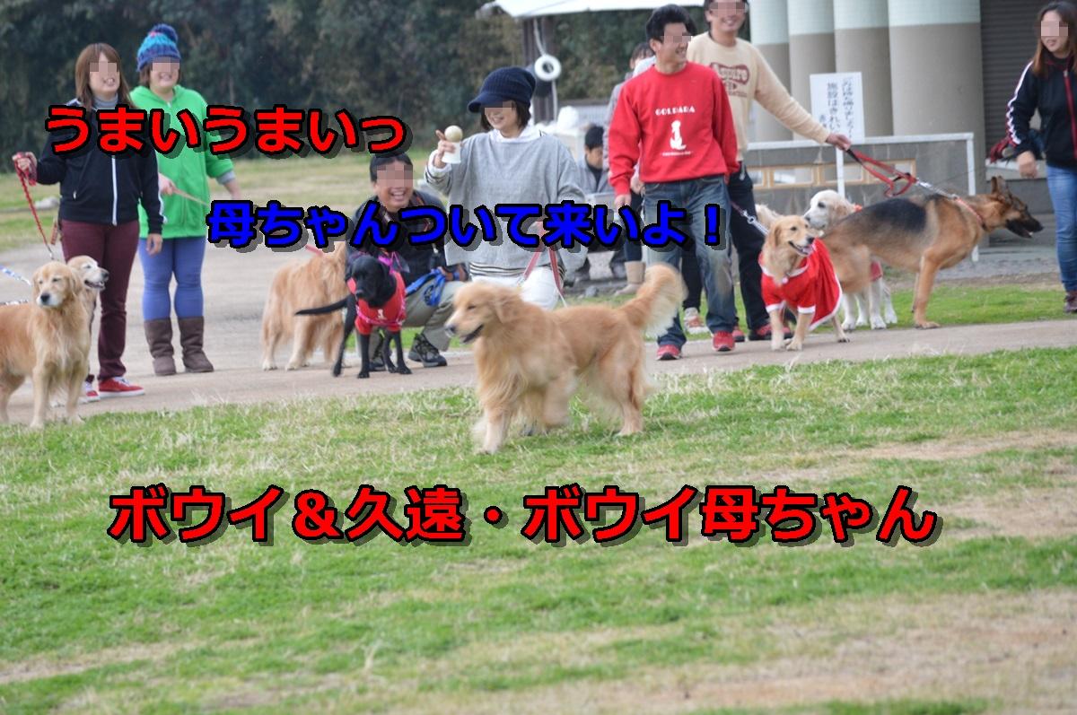 DSC_1459-034.jpg