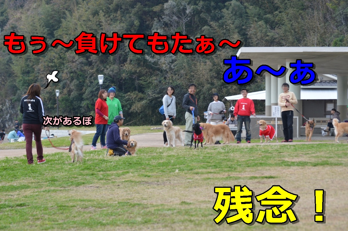 DSC_1510-084.jpg