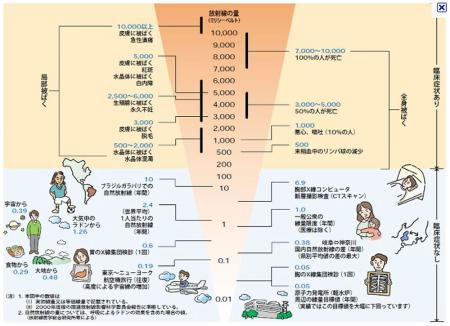 被爆量の図