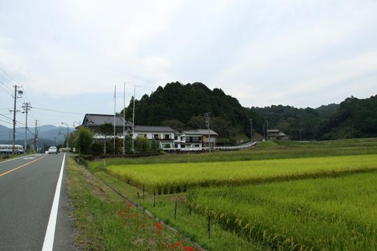 20090919_nagashino_castle-28.jpg