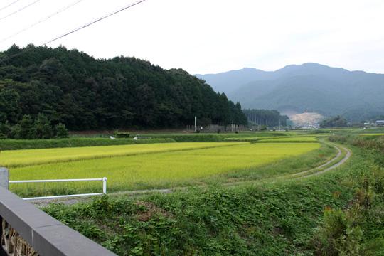 20090919_shitaragahara-10.jpg