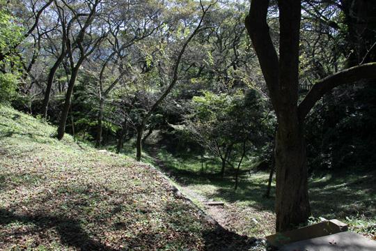 20091011_takato_castle-20.jpg