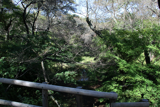 20091011_takato_castle-21.jpg