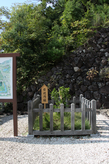 20091012_takeda_shrine-10.jpg