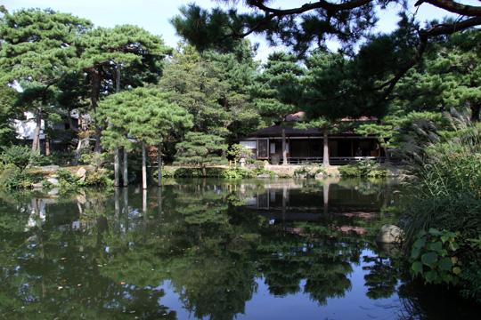 20091017_shibata_city-10.jpg