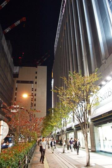20091108_umeda-01.jpg