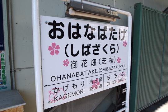 20091123_ohanabatake-02.jpg