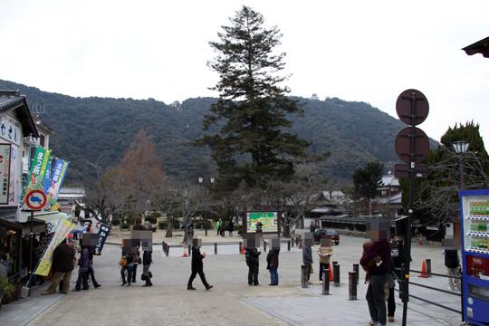 20100110_iwakuni_castle-10.jpg