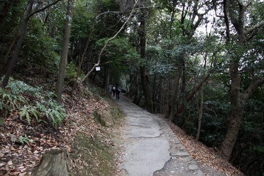 20100110_iwakuni_castle-24.jpg