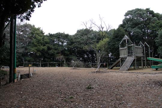 20100110_iwakuni_castle-35.jpg