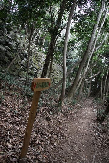 20100110_iwakuni_castle-38.jpg
