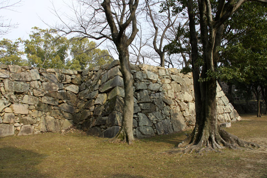 20100111_hiroshima_castle-37.jpg
