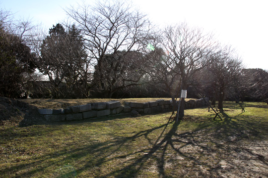 20100116_sakura_castle-10.jpg