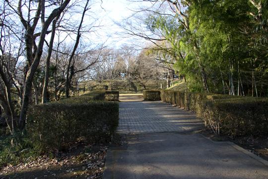 20100116_sakura_castle-22.jpg