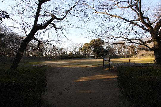 20100116_sakura_castle-26.jpg