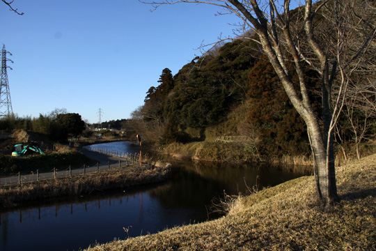 20100116_sakura_castle-35.jpg