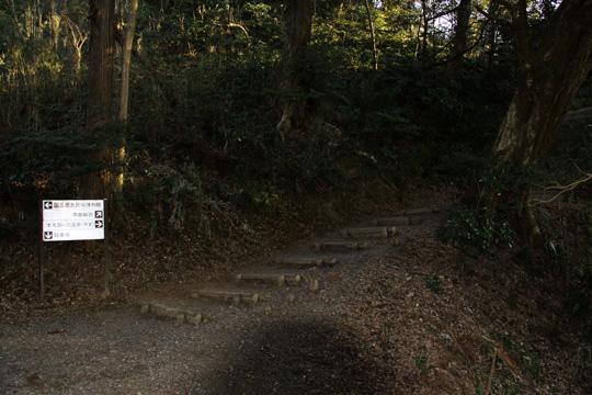 20100116_sakura_castle-38.jpg