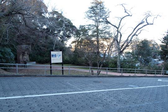 20100116_sakura_castle-54.jpg