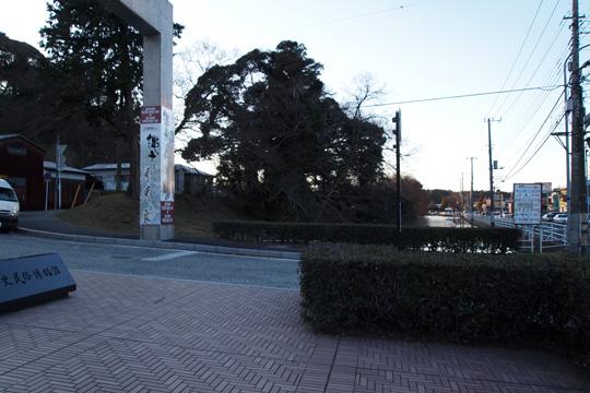 20100116_sakura_castle-57.jpg