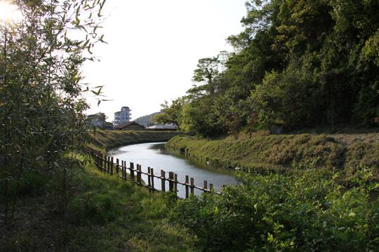 20100501_yuzuki_castle-10.jpg