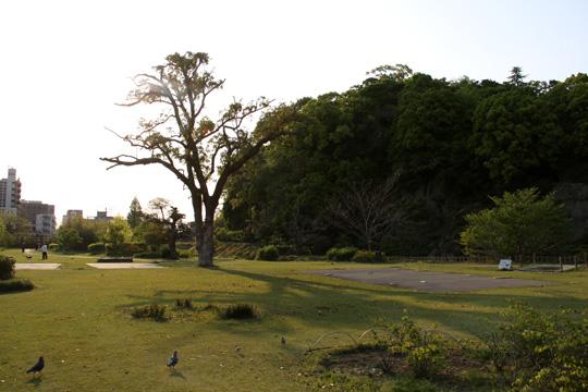 20100501_yuzuki_castle-17.jpg